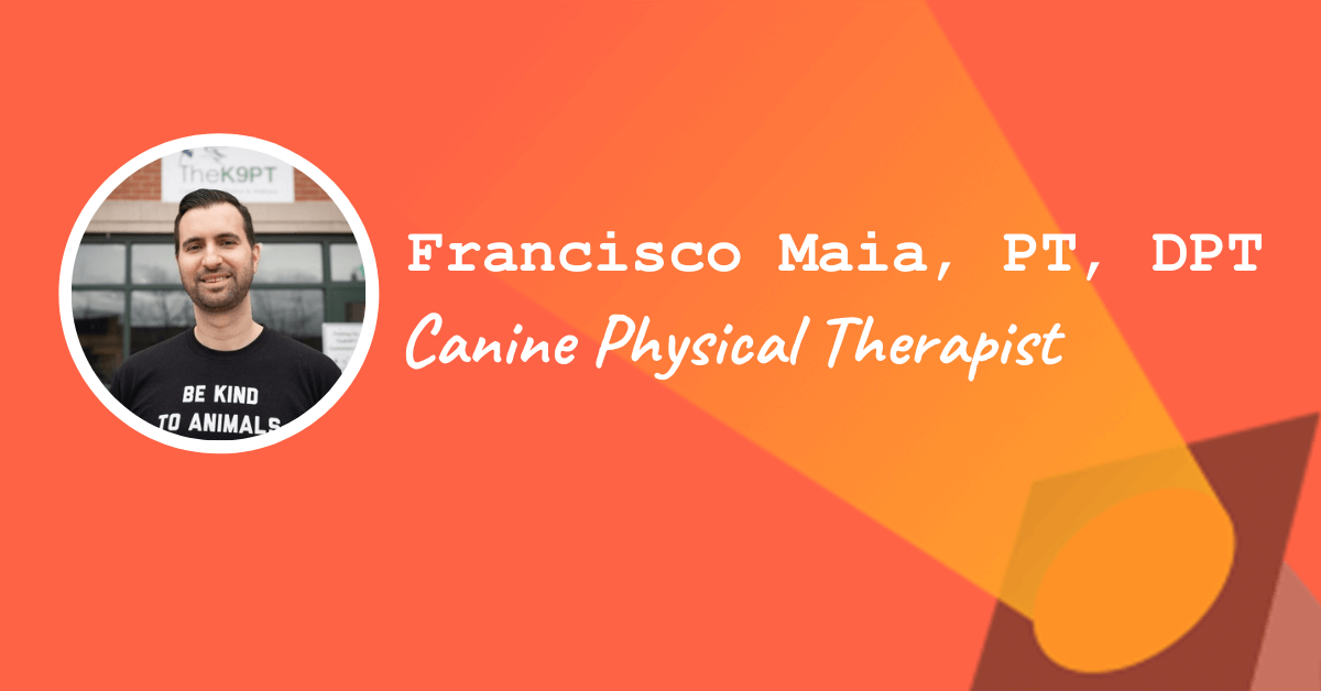 Francisco Maia Canine Physical Therapist